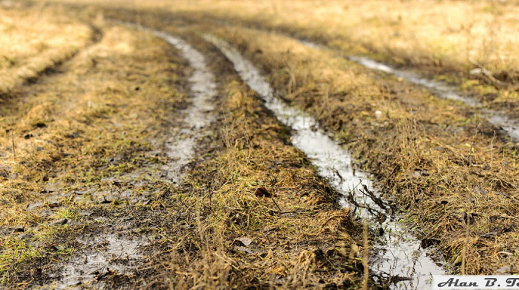 Деревенское бездорожье весной